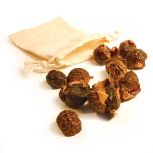 Ecological washing, Soap Nuts